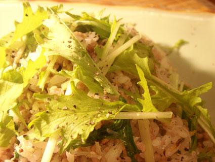 20080930 じゃこと水菜の炒飯2.jpg